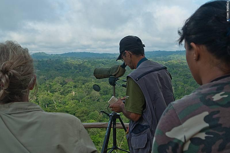 Bird Watching at Cristalino Jungle Lodge, Brazil (©photocoen)