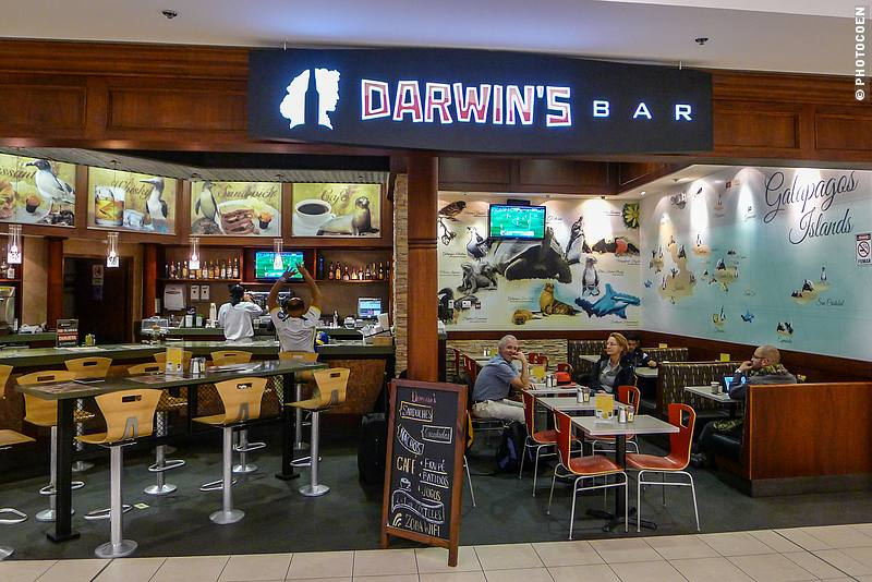 Darwin's Bar, Quito Airport, Ecuador (©photocoen)