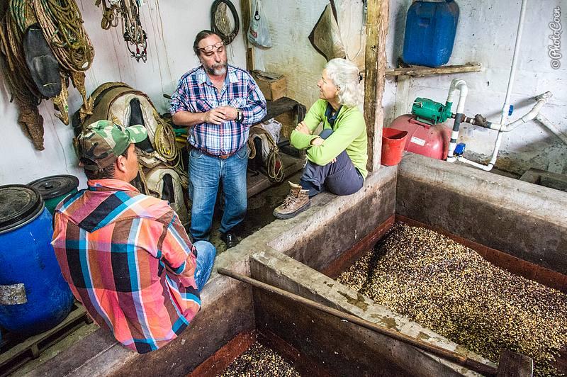Coffee Farm in Colombia (©photocoen)