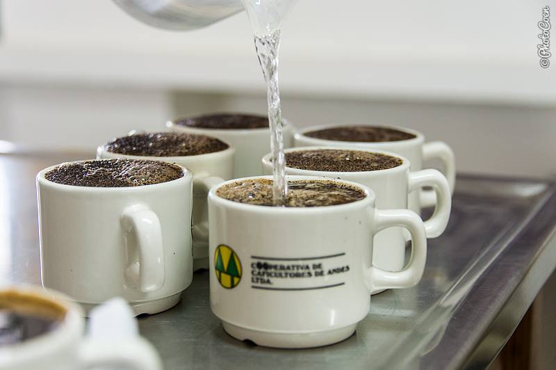 Tasting Coffee, Colombia (©photocoen)