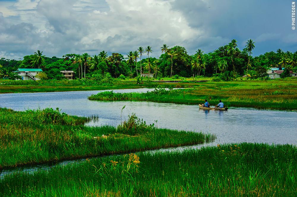 Savanne in Moruca, Guyana (©photocoen)