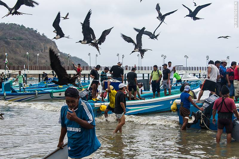 Fishermen in Puerto Lopez, Ecuador (©photocoen)